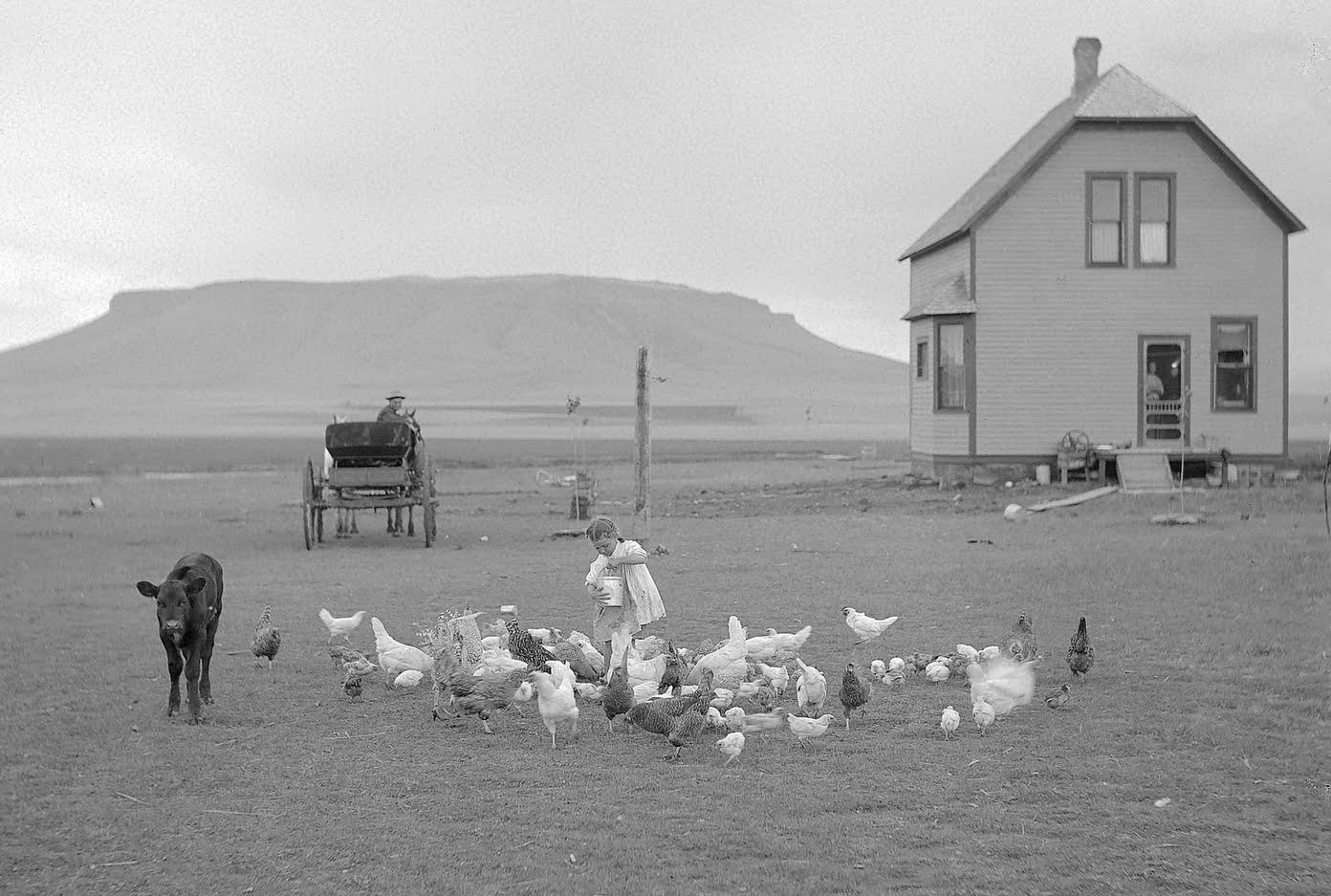 hancock-homestead-settler
